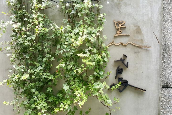枝葉繁花下的隱形魔法店鋪|黑鳶