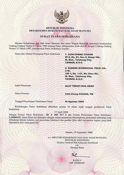Indonesia Patent