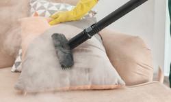 Steam cleaner and coronavirus