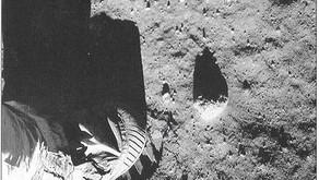 Απόλλων 11: Η Μελανή Κηλίδα της Ανωριμότητας