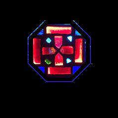 nall naz logo.png
