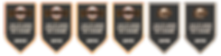 Association of the Year Banners.png
