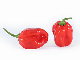 Scotch Bonnet-1.jpg
