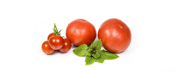 tomatoes-1436422_960_720 (2).jpg