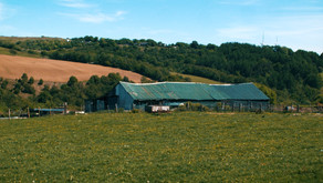 Thousands of farms to receive early payment support, says Welsh Government