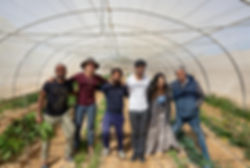 Group in greenhouse.jpg