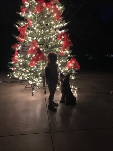 Light Up the Park Event