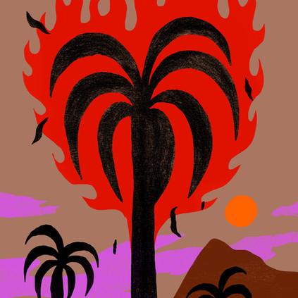 burning palm.jpg
