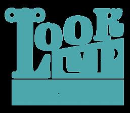 Lookup Teal-03.png
