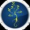 2020 YogaJaneUK Icon Logo.png