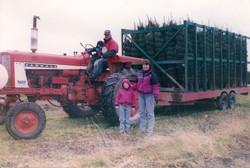 Ketchum Tree Farm