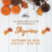 Copy of Skyview Flyer.jpg