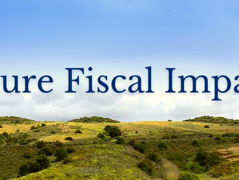 2020 Future Fiscal Impacts - Professional Service Providers
