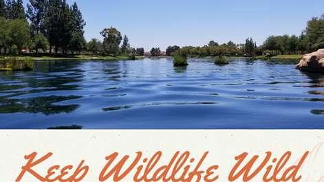 Keep Wildlife Wild at SAMLARC