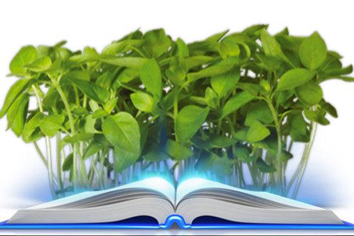 Ebook Cartea DeMenta