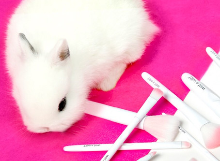 5 Reasons to choose Cruelty Free Makeup