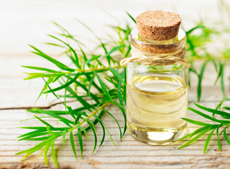 Radiant Skin with Tea Tree Essential Oil