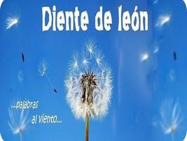 Diente de león...palabras al viento...