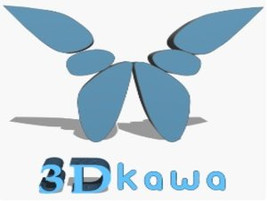 3DKawa