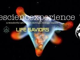 thesciencexperience: Life Saviours