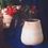Thumbnail: Maceta Begonia