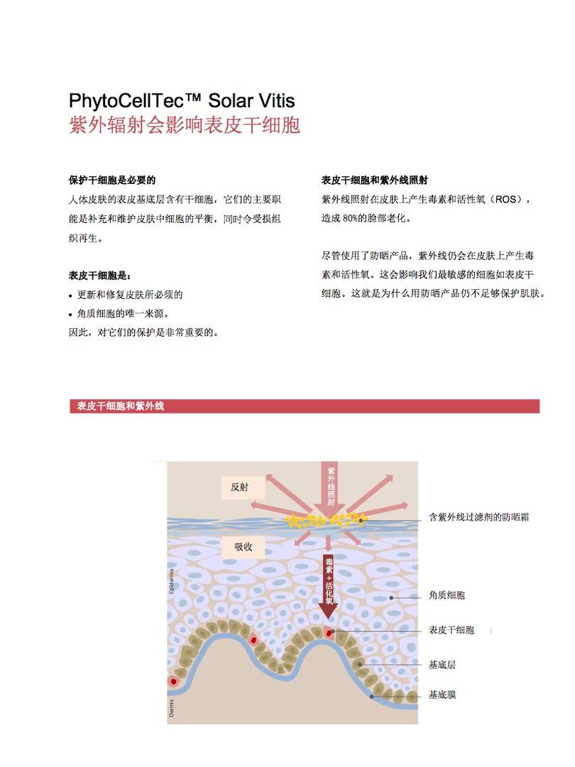 葡萄干细胞4.jpg