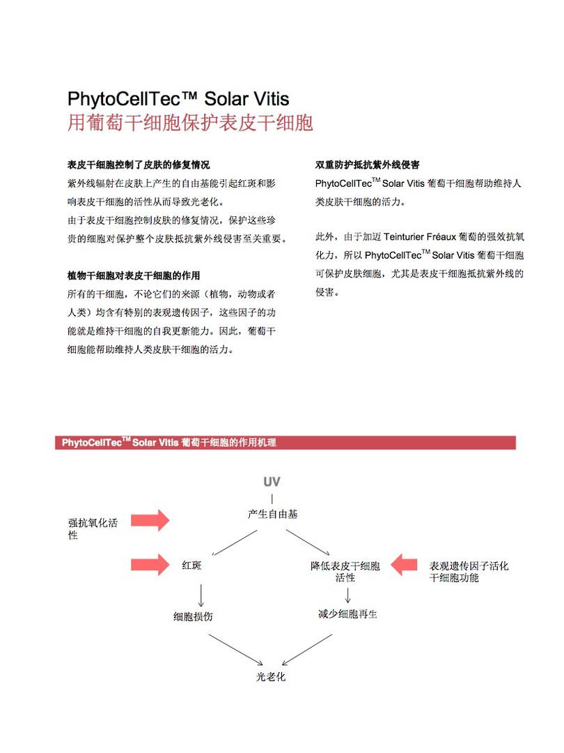 葡萄干细胞5.jpg