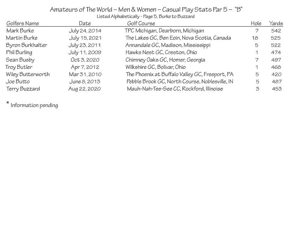 thumbnail_Amateurs Casual Play Stats - Par 5 - B Page 5.jpg