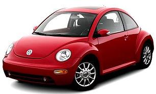 beetle 1.jpg