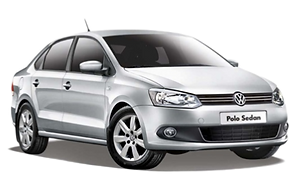 polo png.png