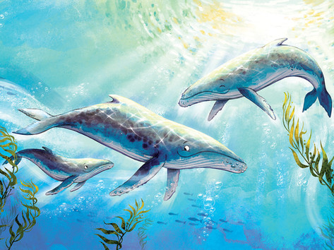 3 Whales