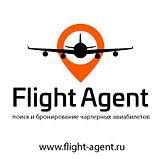 лого баннер флайт.png