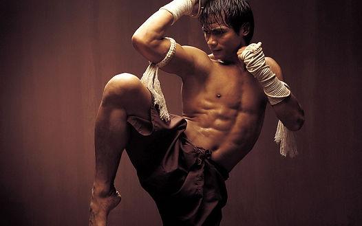Телеканал ЕГЭ даилоги о боевых искусствах