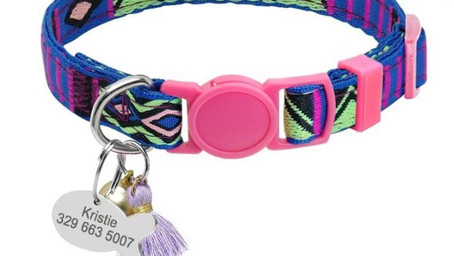 Personalized Cat Collar with  Bell and Customized Fish Tag