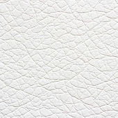 08 White.jpg