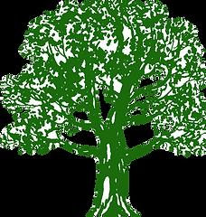 Tree Plant the Future