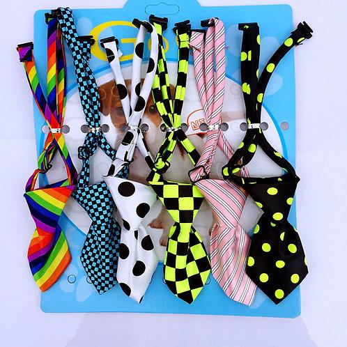 Pack collar de mascota x6