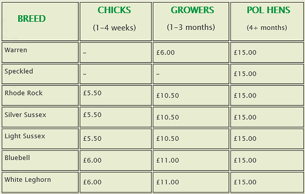 Price list for hens and chickens