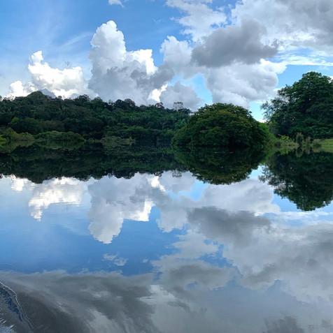 Amazon River, Summer, 2019.