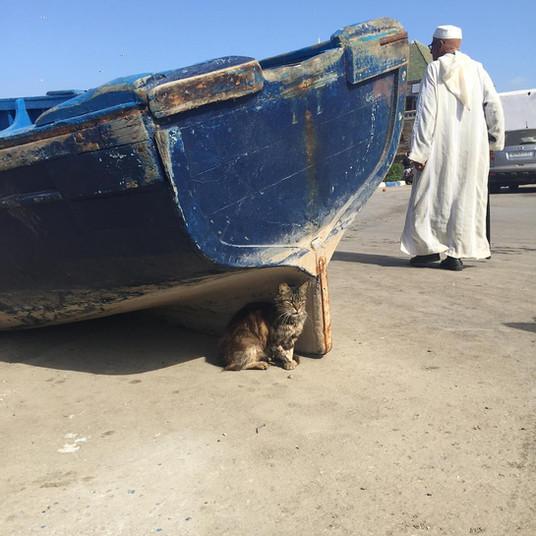 Morocco, Spring, 2017.