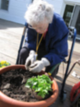 Gardening!.jpg