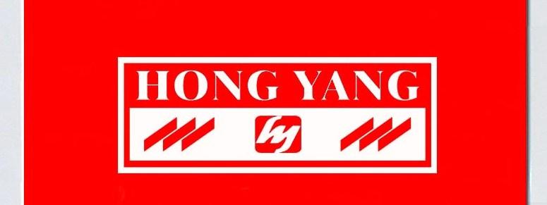 647China-Hongyang-Group-Co-Ltd-