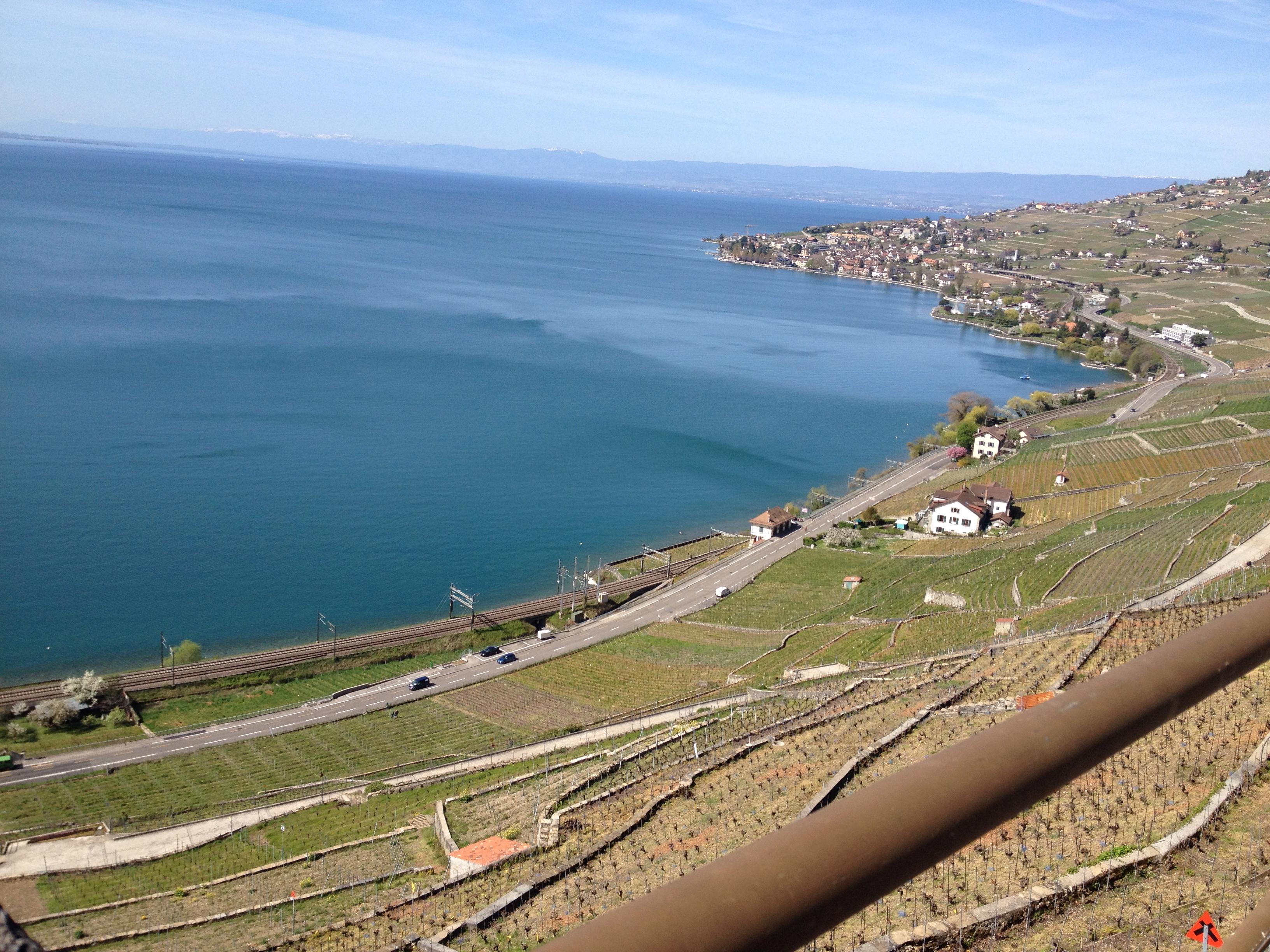 vignoble du Lavaux, patrimoine de l'Unesco, vue d'Epesses.jpg