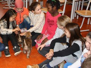 Puppies op bezoek Montessorischool Oegstgeest / Puppies visiting Montessorischool Oegstgeest