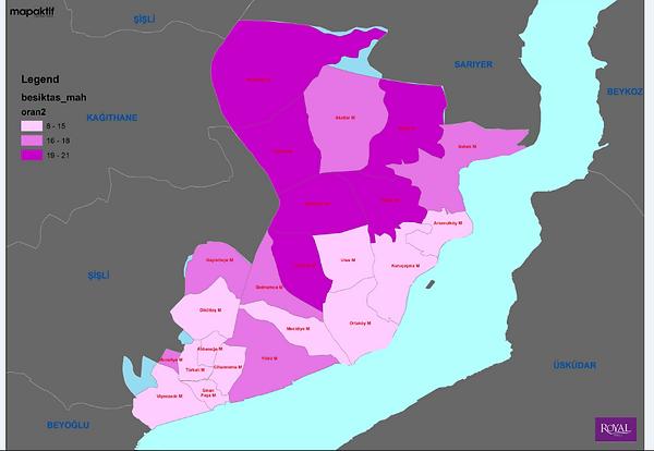 dijital-harita-1.png