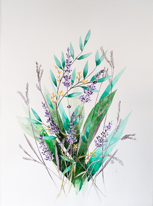 Florale Studie - Lavendel