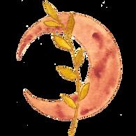 LogoMondNeugespiegelt.png