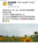 Screenshot_20191108-103258.png