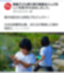 Screenshot_20191108-113118.png