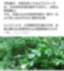 Screenshot_20191108-120954.png